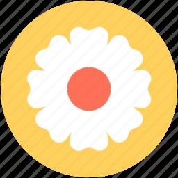 aster, aster flower, blossom, calendula, freshness icon