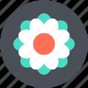 blossom, swirl shape flower, flower, freshness, beauty icon