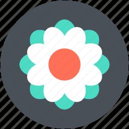 beauty, blossom, flower, freshness, swirl shape flower icon