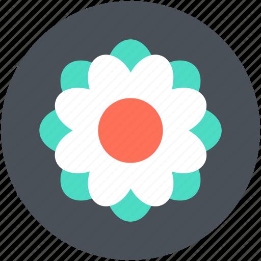 Beauty, blossom, flower, freshness, swirl shape flower icon - Download on Iconfinder