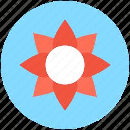 blossom, floral, flower, spring, sunflower icon