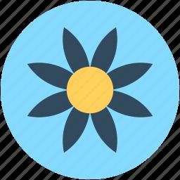 flower, gerbera, gerbera daisy, gerbera flower, nature icon