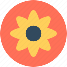 anemone, anemone flower, decoration, flower, spring flower icon