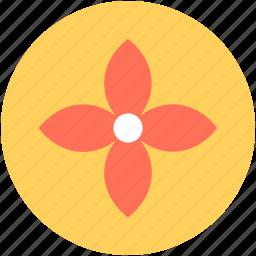 bloodroot, bloodroot flower, blossom, flower, spring flower icon