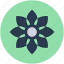 blossom, chinese flower, decoration, flower beauty, nature icon