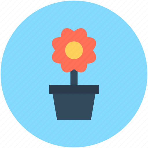 eco, greenery, growing plant, plant, small plant icon