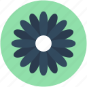 cowslip, decoration, floral, primrose, summer icon
