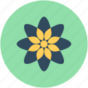 flower, puschkinia, puschkinia flower, puschkinia libanotica, spring flower icon