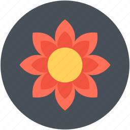 beautiful, bloom, blooming, blossom, sunflower icon