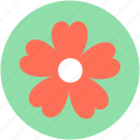 clover, daisy, nature, plant, shamrock icon