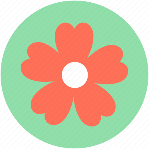 clover, daisy, nature, plant, shamrock icon