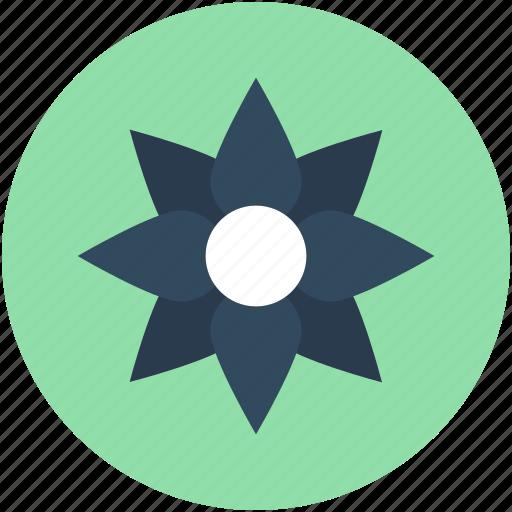 Azalea, azalea flower, bloom, floral, flower icon - Download on Iconfinder