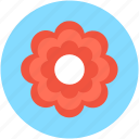 bloom, blossom, daisy, flower, macro flower icon