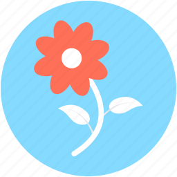 blossom, flower, nature, rose, rosebud icon