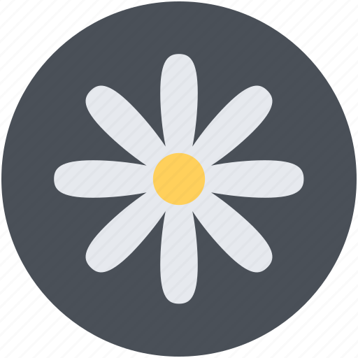 Buttercup on stem, buttercup stem, buttercup with stem, flower, stem buttercup icon - Download on Iconfinder