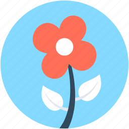 blossoming, floral, flower, petals, sagittaria graminea icon