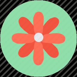 cowslip, decoration, floral, primrose, summer icon