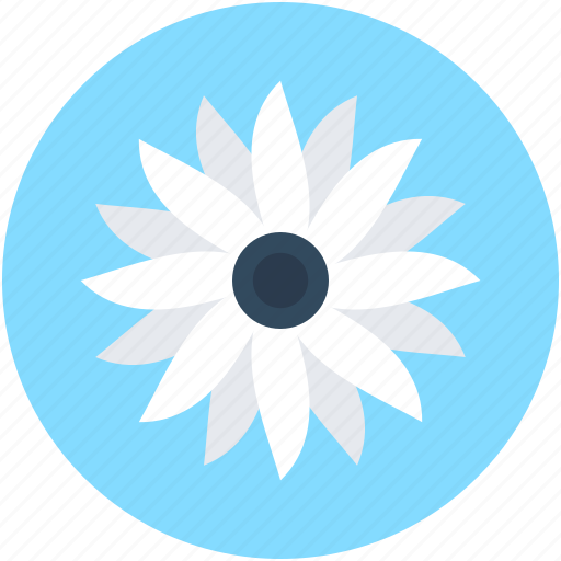 Blooming, cowslip, ecology, leaf, nature icon - Download on Iconfinder