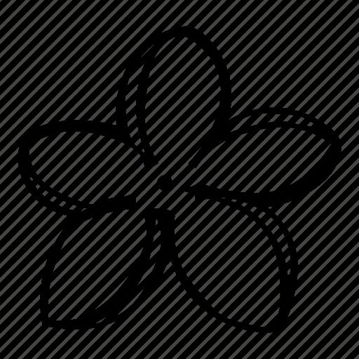 blossom, flower, garden, natural, nature icon