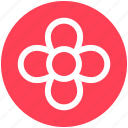 floral, florist, flower, garden flower, plant