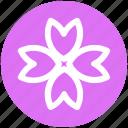 blossom, flower, gander flower, marigold, nature