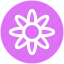 florist, flower, garden flower, nursery, plant