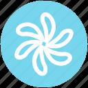 floral, flower, garden flower, nature, plant