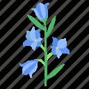 blue, bell