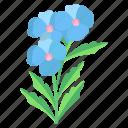 blue, plumbago