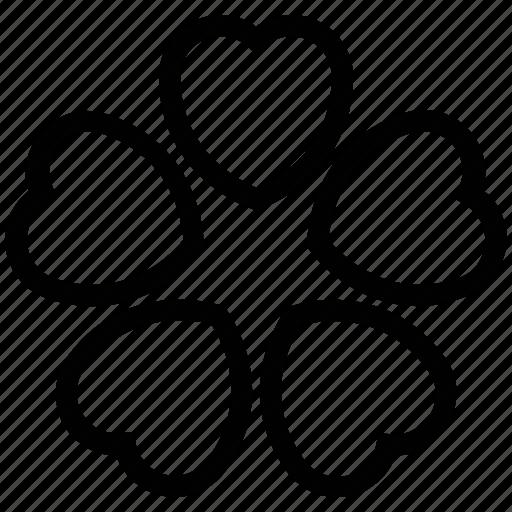 flower, heart shape petals, shamrock shape flower, trifoliolate icon