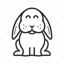 rabbit, bunny, easter, animal, cute