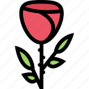flower, flowerbed, garden, plant, rose icon