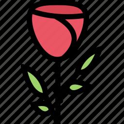 flower, flowerbed, garden, plant, rose icon