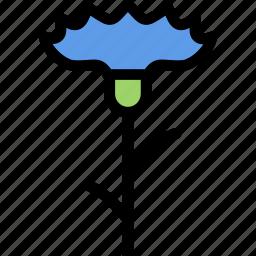 cornflower, flower, flowerbed, garden, plant icon
