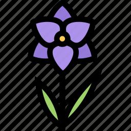 flower, flowerbed, garden, orchid, plant icon
