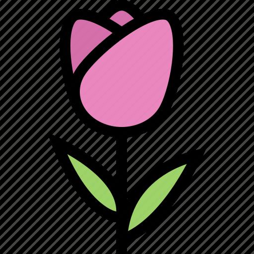 flower, flowerbed, garden, plant, tulip icon