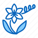 blossom, flower, freesia icon