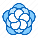 blossom, flower, gerbera, nature icon
