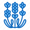 blossom, flower, garden, oil, plant icon