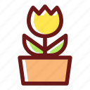 blossom, floral, flower, flowering, plant, pot, tulip icon