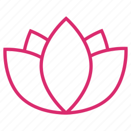 abstract, bloom, flower, flowers, lotus, nature, yoga icon
