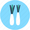 daikon, daikon radish, food, vegetable, white radish icon