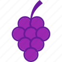 food, fresh, fruit, grape icon