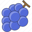 fresh, fruit, grape, meal icon