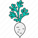 cooking, daikon, diet, fresh, vegetable, veggie, white radish icon