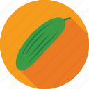 courgette, cucumber, food, vegetable, zucchini icon