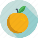 food, healthy, fruit, diet, orange