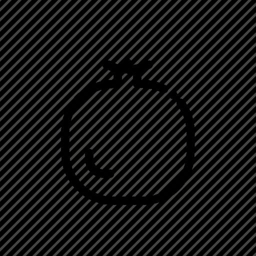 Food, fruit, grenadine icon - Download on Iconfinder