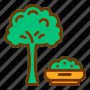 broccoli, diet, health, vegan, vegetable