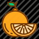 diet, fresh, fruit, health, orange icon